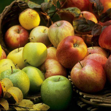 Obuolių trupininis desertas
