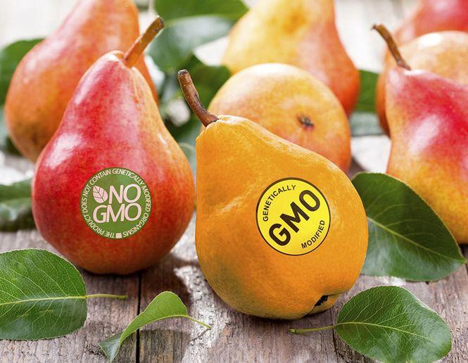 Ģenētiski modificēta pārtika - ģenētiski modificēti cilvēki?