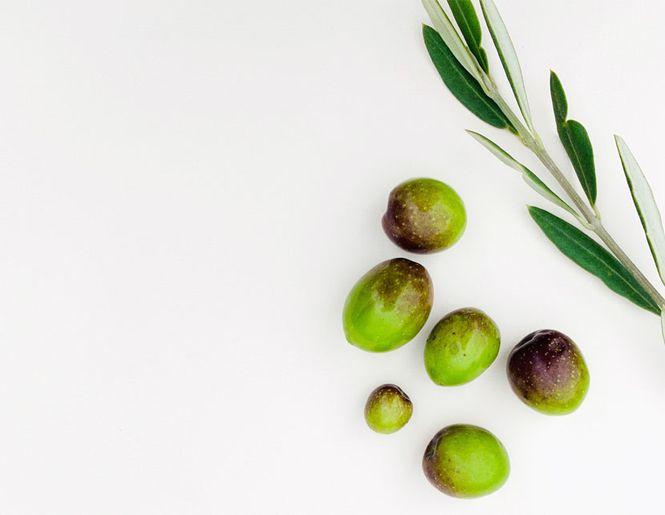 Alyvuogių aliejus – visada aktualu l Guoda Azguridienė