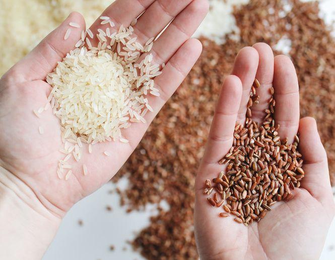 Maailma toit - riis